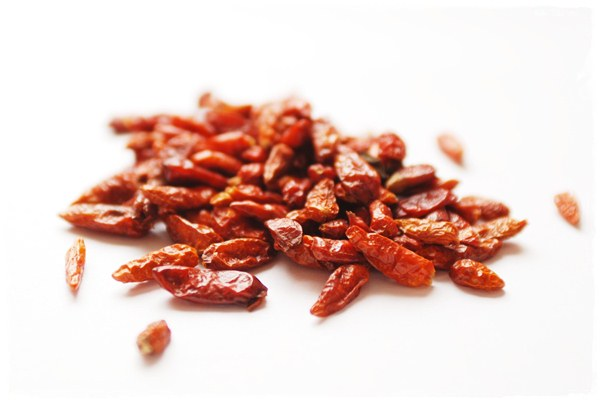 Chili, Capsicum frutescens L.